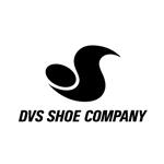 DVS(ディーブイエス)