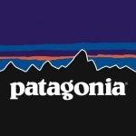 patagonia(パタゴニア) ダウンジャケット