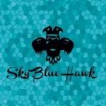 Sky Blue Hawk(スカイブルーホーク)