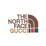 THE NORTH FACE x GUCCI(ノースフェイス x グッチ)